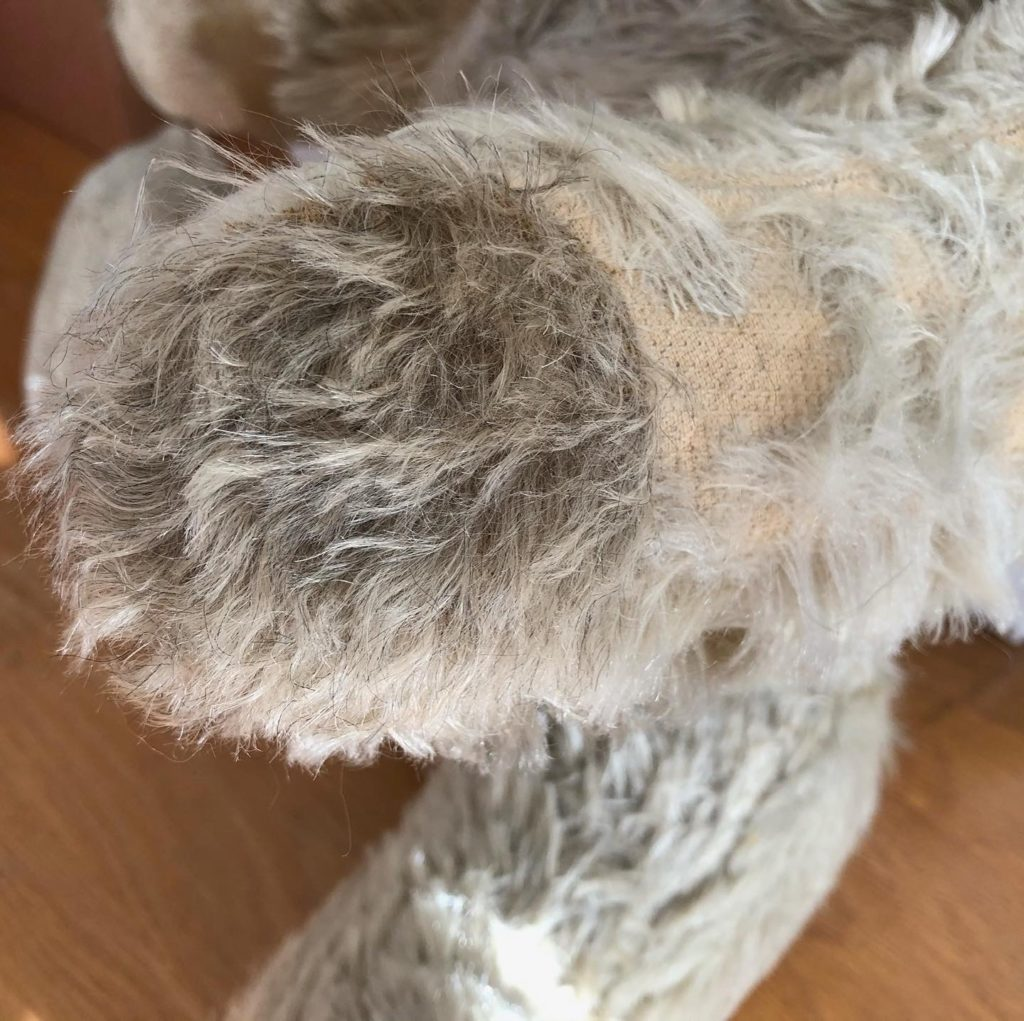 Paw repaired